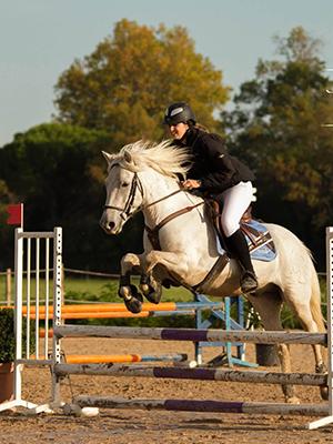 _chevaux-temoignages-02